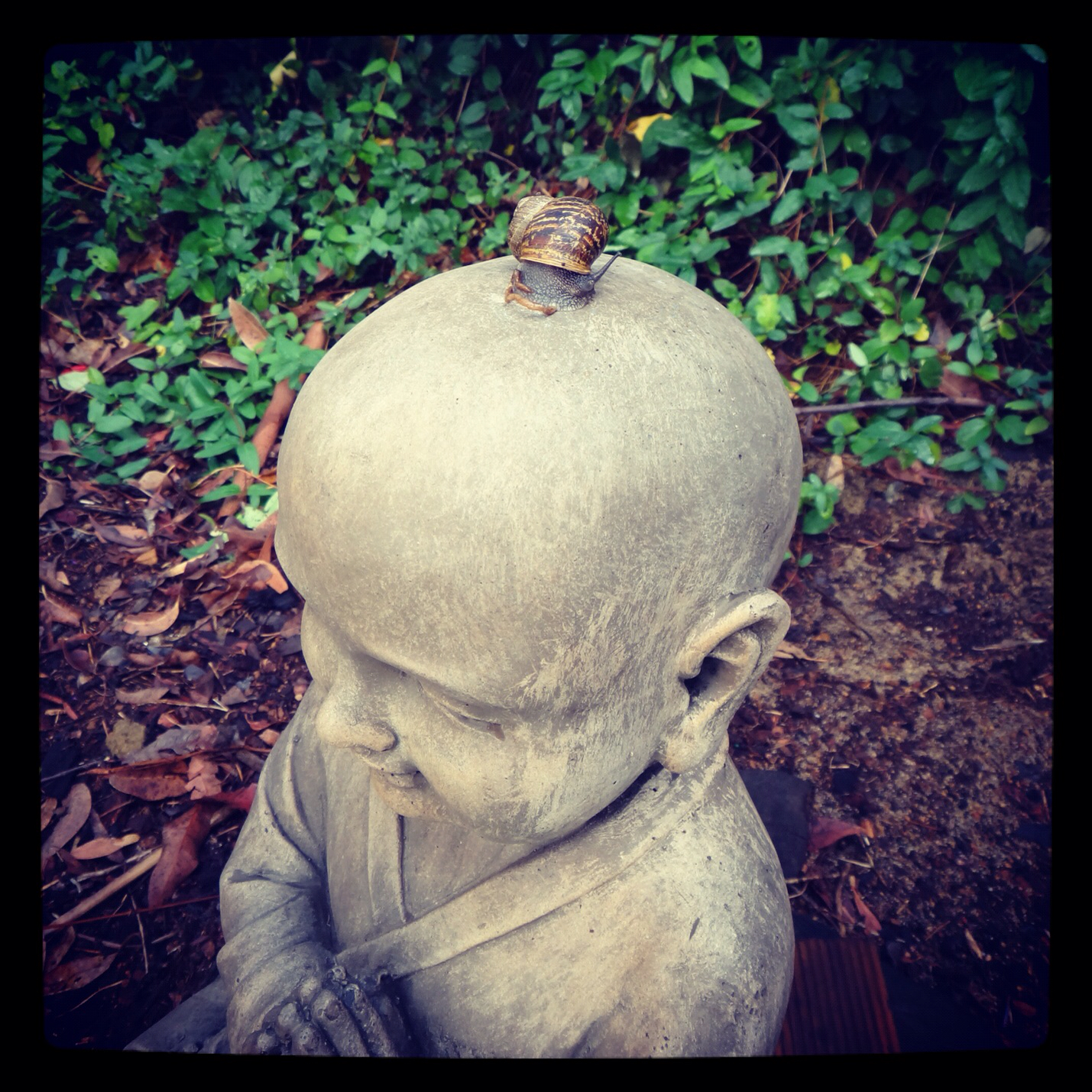 A snail looking down from atop the buddha's head! :)