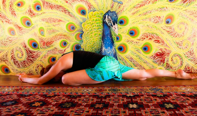 Rainbow Pammy in Alternate Pigeon Pose